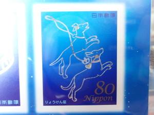 P7050068